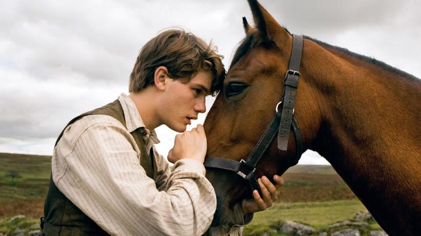 Боен кон