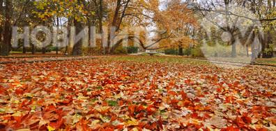 Нека се порадваме още малко на красивата есен