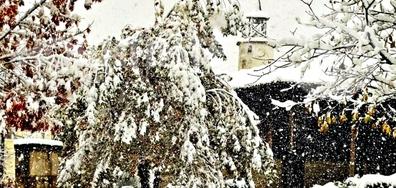 Зимна ноемврийска приказка