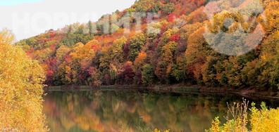 Красиви есенни отражения