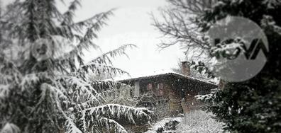 Бяла пролет от Котел