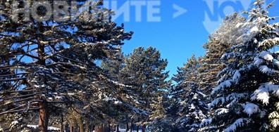 Слънчево, снежно, красиво...
