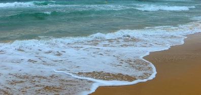Море и летни приключения
