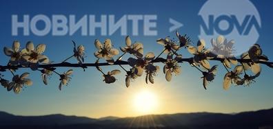 Пролетта украси всичко