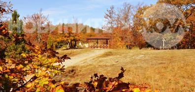 Есента твори чудеса...