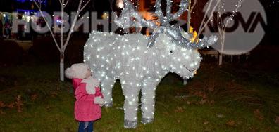 Коледният дух е вече в Разград