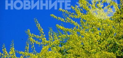 Безоблачно небе, горещи цветове