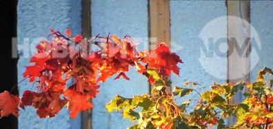 Добре дошла, есен!