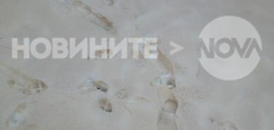 Цветен сняг в Силистра