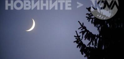 Елхата и луната