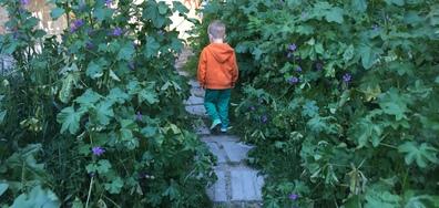 Пътечка към детска площадка