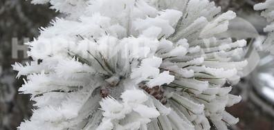Красиво ледено изкуство от баба Марта!