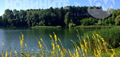 На езерото в горещия летен ден
