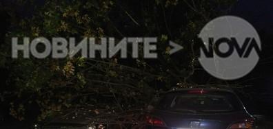 Безотговорност в центъра на София