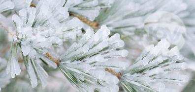 Ледена красота, ненагледна...