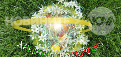 Великденски яйца от град Свищов