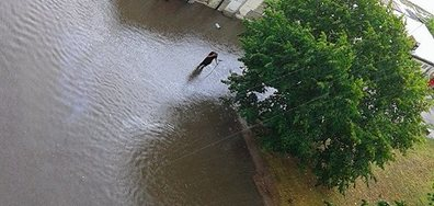 Наводнение в Бургас