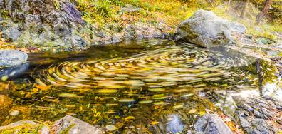 Есенен водовъртеж