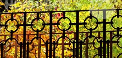 Букет от цветове зад оградата