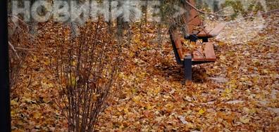 Да поседнем сред красотата на есента