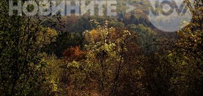 Есен край Плевен