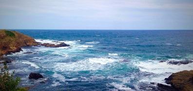 Морска пяна