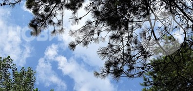 Към красивото небе!