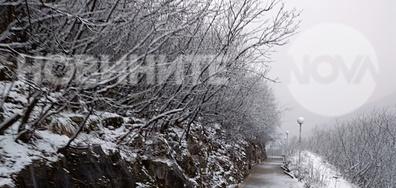 Сняг във Враца