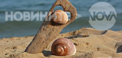 Морско настроение...