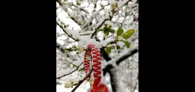 Мартенски сняг
