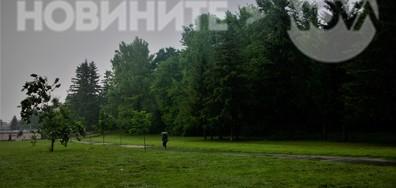 Дъждовно и в парка