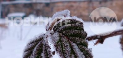 В ранната студена утрин