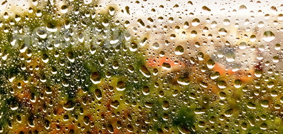 В дъждовния октомврийски слеобед