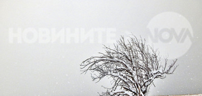 Зимата се завръща