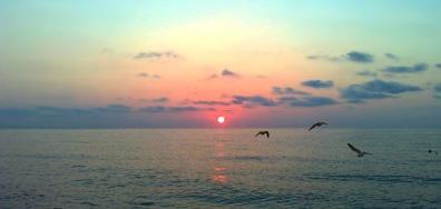 В тишината и красотата на морското утро