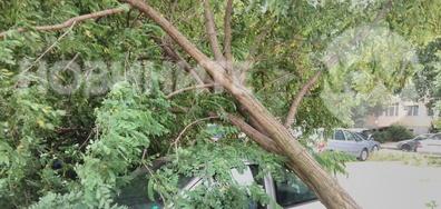 Вятър в Пловдив