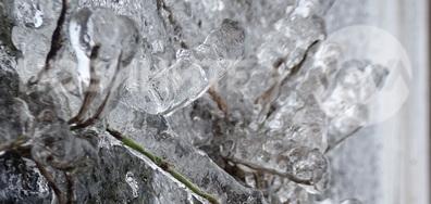 Ледени стръкчета