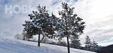 Конявската планина със сняг