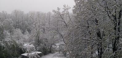 Снежната покривка в Габрово