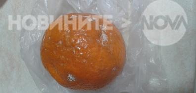 Безплатните плодове в училище