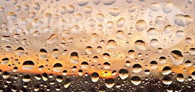 Живителен августовски дъждец