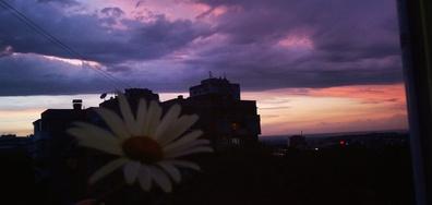 Залезът в Русе след буря
