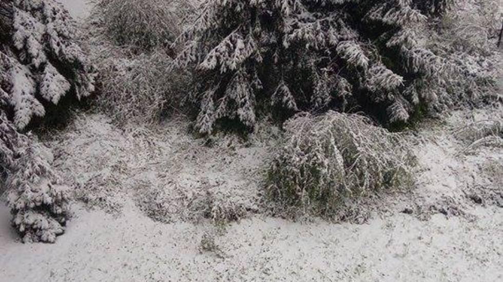 Сняг в Габрово през април