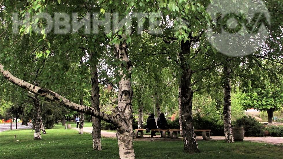 Да поседнем сред зеленината в Плевен