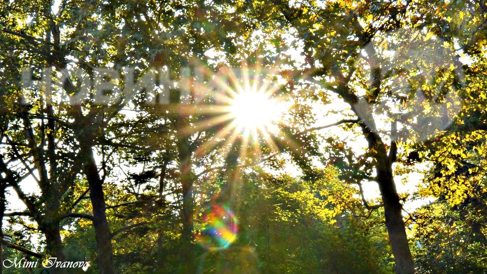 От ранна утрин слънцето жари...