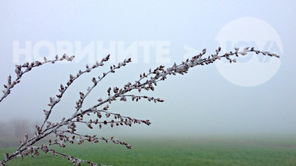 Сняг и мъгла над февруарското поле