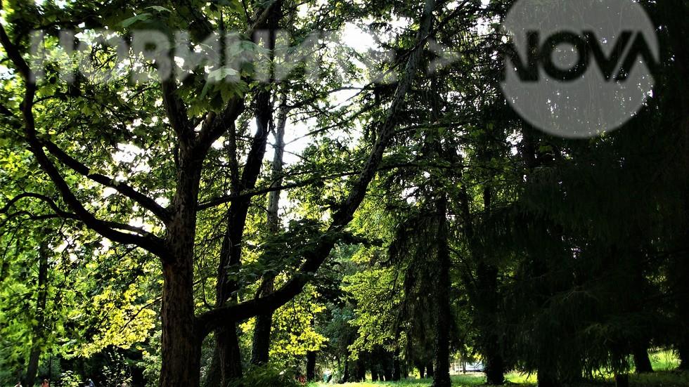"""На сянка в парк """"Кайлъка"""""""
