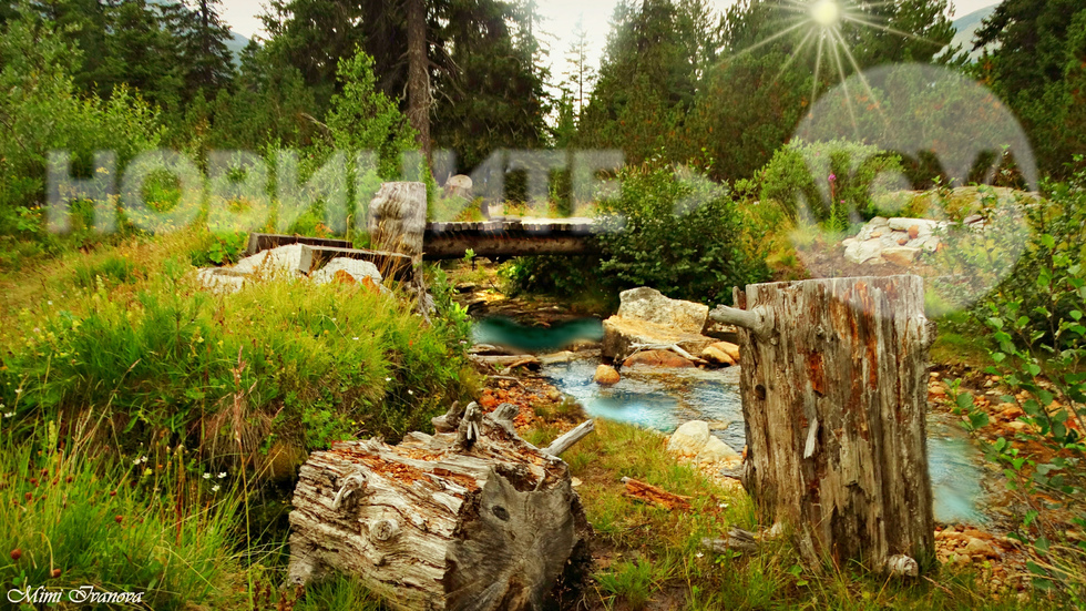 По живописните мостчета и пътечки на Рила