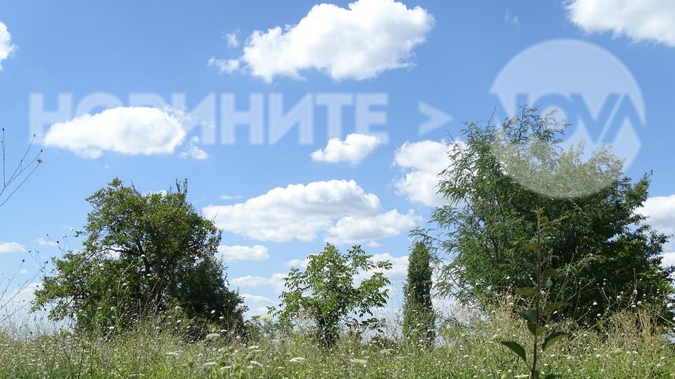 Летен пейзаж