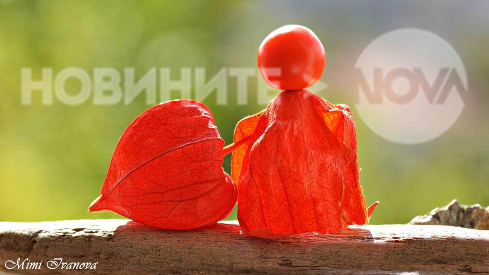 Слънчево настроение, приятели от Нова ТВ!